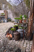 Early spring arrangement of narcissus planted in terracotta pots and hyacinths in zinc bowl on table in courtyard