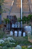 Still-life arrangement of zinc watering cans, milk churns and wooden barrel against barn wall