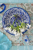 Blue and white agapanthus on blue-and-white dish