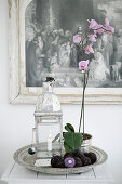 Still-life arrangement with orchid and lantern on round silver tray