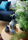 Stoneware vases and houseplant on coffee table