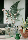 Branches of cotton bolls and potted agave in front of wall hanging with fern motif