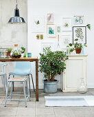 Wooden table, chairs, houseplants and botanical illustrations on wall