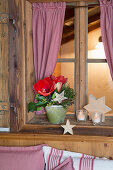Arrangement with amaryllis and wooden stars on windowsill of farmhouse parlour
