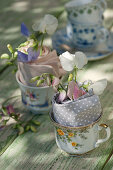 Sweet peas in napkins in small cups