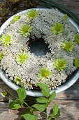 Wreath of Queen Anne's lace and green chrysanthemums in zinc dish