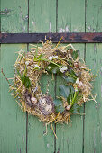 Straw Easter wreath with grape hyacinths, ivy leaves and Easter eggs hung on door