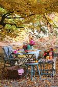 Gedeckter Tisch unterm Baum im Herbstgarten