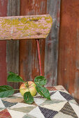 Apple with leaves laid on a chair cushion