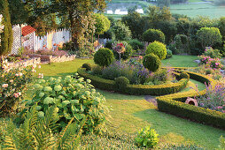 View of the hillside garden with hydrangea 'Annabelle' and flower beds with box hedges