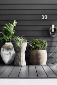 Plants in rustic planters against house wall with grey panelling
