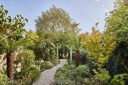Gravel path in lush garden