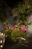 Christmas arrangements of moss