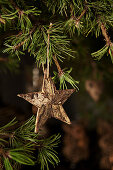 Star made from bark hung from pine branch