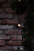 Fairy lights on brick wall on terrace