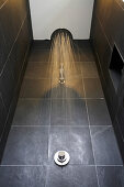 Shower in bathroom with black tiles