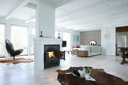 Dog lying on cowhide rug in front of central fireplace in bright living room