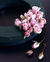 Pink rosebuds in a ring of floral foam