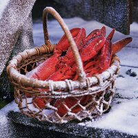 Lobsters in basket