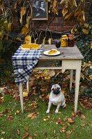 Herbstlicher Tisch mit Pumpkin Pie