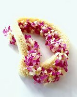 Two leis (flower wreaths from Hawaii)