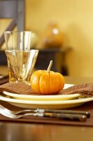 Place Setting with Gourd on Holiday Table