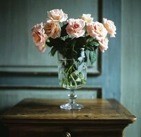 Salmon colored roses in a glass vase