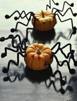 Zierkürbisse mit Spinnenbeinen (Deko für Halloween)