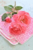 Red roses on a cloth