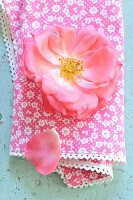 A pink rose on a cloth