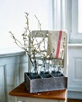 Bottles of cherry blossom twigs in tray