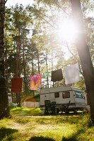 A washing line in front of a caravan on a camp site with tall trees