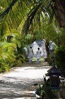 Women dressed in white walking along avenue in garden of palm trees