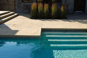Swimming pool and grasses in garden