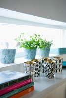 Golden cups with a black-and-white pattern and pots of herbs on the window sill of a long narrow window