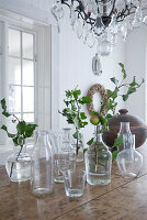 Twigs of leaves and apple branch in various glass bottles on wooden table in rustic interior