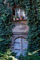 Ivy covered facade of a traditional country home with decoratively carved windows