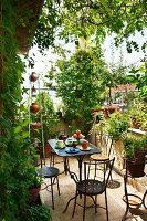 Tea break on sunny terrace with planters and ornate, black metal table and chairs