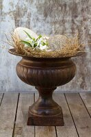 Amphora decorated with bird's eggs and snowdrops in straw nest
