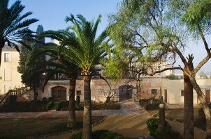 Mediterranean garden with palm trees in front of manorial residential complex