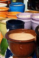 Various colourful flower pots