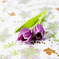 Two Purple Tulips on Floral Fabric