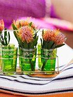 Protea flowers in green, Moroccan tea glasses in metal carrier