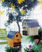 Bird house hanging on a small tree with yellow flowers
