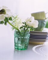 White anemones in a glass in front of a stack of plates