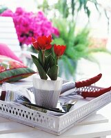 Red tulips in a pot and secateurs on a white, vintage wooden tray