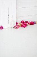 Rhododendron (variety: Ammerland) and hand brush on floor in front of white wooden wall