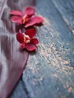 Red orchids on a leaf on a wooden surface