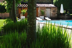 Relax in Mediterranean garden with pool and sun loungers