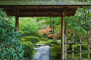 Japanese bamboo gate with roof in Portland's Tea Garden
